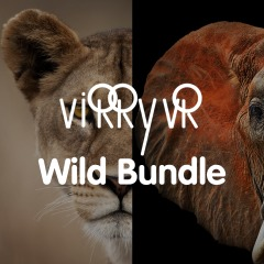 Virry VR: Wild Bundle